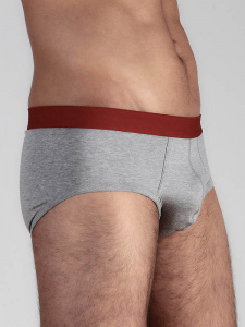 Mens Underpants - grey/red