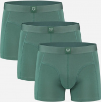 "3er-Pack Boxer-Brief ""Bauke"" - grün"